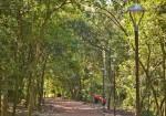 Ampliação do Parque Getúlio Vargas é conquista da Prefeitura deCanoas